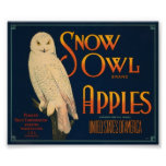 Etiqueta del cajón del vintage de las manzanas de  poster