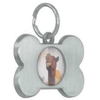 Etiqueta del collage del camello placas de mascota