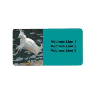 Etiqueta del Egret nevado Etiquetas De Dirección