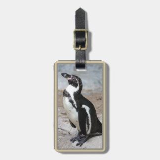 Etiqueta del equipaje de la foto del pingüino de etiquetas bolsa
