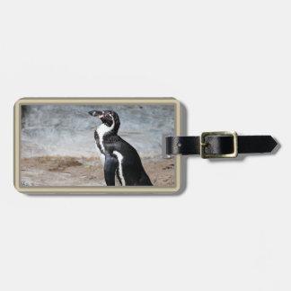 Etiqueta del equipaje de la foto del pingüino de etiquetas para maletas