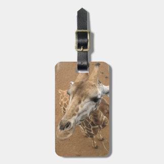 Etiqueta del equipaje de la mirada de la jirafa