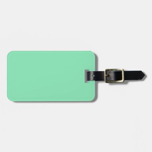 Etiqueta del equipaje de la verde menta etiqueta para maleta