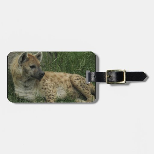Etiqueta del equipaje de los Hyenas de risa Etiquetas Bolsas