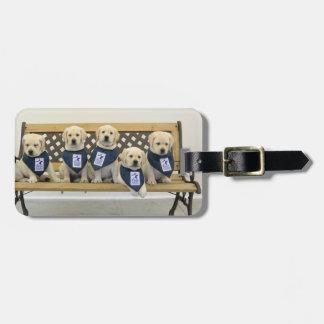 Etiqueta del equipaje del banco del tiempo - perso etiquetas bolsa