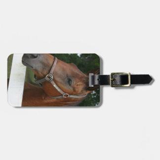 Etiqueta del equipaje del caballo de la castaña du etiqueta para maleta