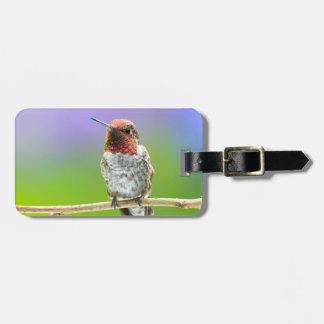 Etiqueta del equipaje del colibrí etiquetas maleta