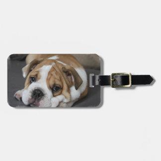 Etiqueta del equipaje del dogo el dormir etiquetas maleta