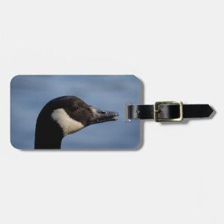 Etiqueta del equipaje del ganso de Canadá