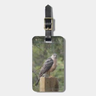 Etiqueta del equipaje del halcón del tonelero