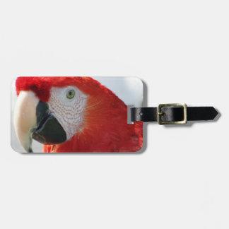 Etiqueta del equipaje del Macaw del escarlata Etiqueta Para Equipaje