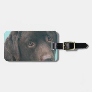 Etiqueta del equipaje del perro del laboratorio de etiquetas maleta