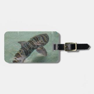 Etiqueta del equipaje del tiburón de tigre etiqueta para equipaje