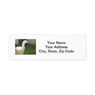 Etiqueta del ganso etiquetas de remite