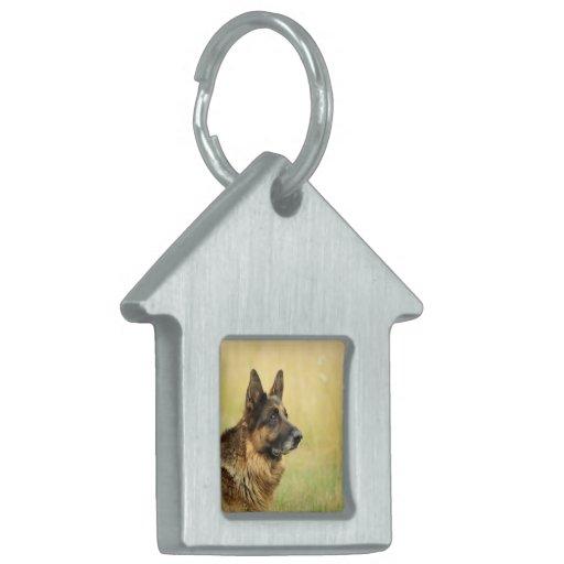 Etiqueta del mascota de la etiqueta - modificada p placas de nombre de mascota