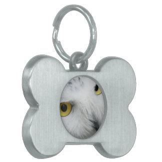 Etiqueta del mascota de la foto del búho Nevado Placas De Mascota
