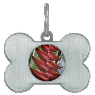Etiqueta del mascota de la pinza de langosta placas de mascota
