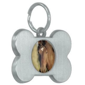 Etiqueta del mascota del caballo de Morgan Placa De Nombre De Mascota
