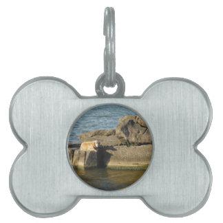 Etiqueta del mascota del perro de agua del lago placas de mascota