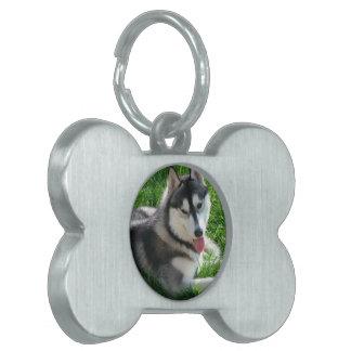 Etiqueta del mascota del perro del husky siberiano placa de mascota