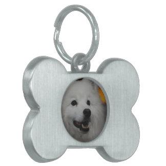 Etiqueta del mascota - modificada para requisitos  placa de nombre de mascota