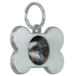 Etiqueta del mascota - modificada para requisitos  placas de mascota