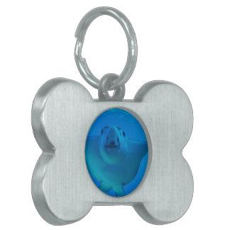 Etiqueta del mascota - modificada para requisitos  placa de mascota
