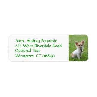 Etiqueta del nombre del remite del perro de etiqueta de remitente