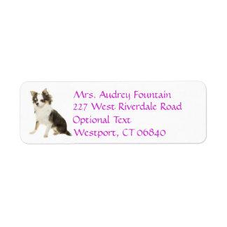 Etiqueta del nombre del remite del perro de etiqueta de remite