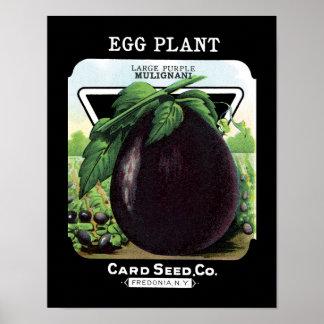 Etiqueta del paquete de la semilla de la berenjena póster
