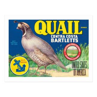 Etiqueta del producto alimenticio del vintage postal