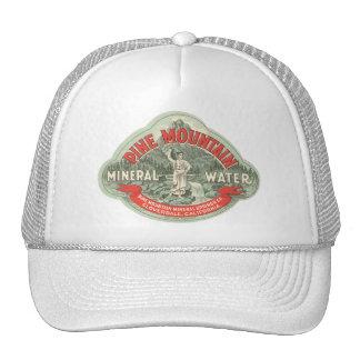 Etiqueta del producto del vintage, agua mineral de gorra