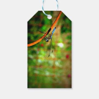 Etiqueta del regalo con una libélula etiquetas para regalos