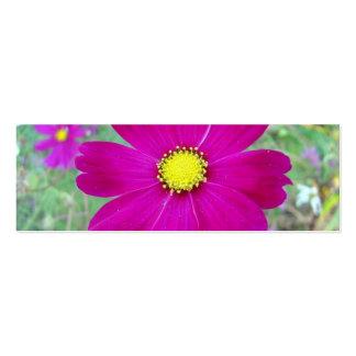 Etiqueta del regalo del feliz cumpleaños tarjetas de visita mini
