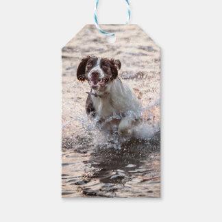 Etiqueta del regalo del perro etiquetas para regalos