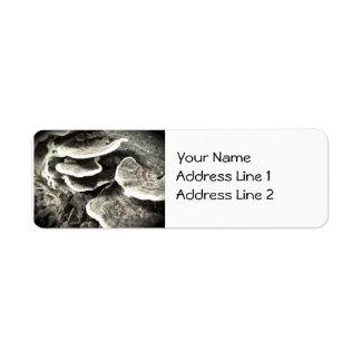 Etiqueta del remite de Avery de los hongos del Etiquetas De Remite