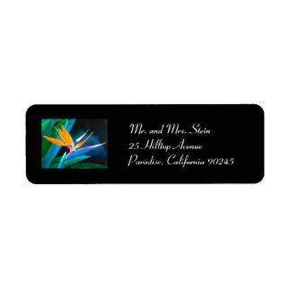 Etiqueta del remite de la ave del paraíso etiquetas de remite