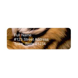 Etiqueta del remite de la foto del tigre etiqueta de remite