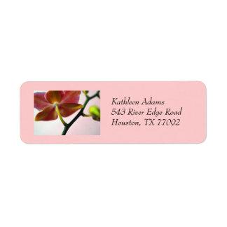Etiqueta del remite de la orquídea etiquetas de remite