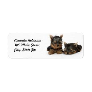 Etiqueta del remite de los perritos de Yorkshire Etiquetas De Remite