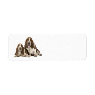 Etiqueta del remite de los perros de afloramiento etiquetas de remite