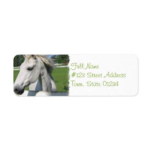Etiqueta del remite del caballo blanco etiqueta de remitente