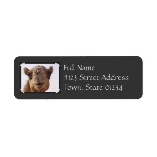 Etiqueta del remite del camello etiqueta de remite