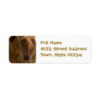 Etiqueta del remite del diseño del caballo de la etiqueta de remite