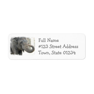 Etiqueta del remite del elefante el tocar la etiqueta de remite