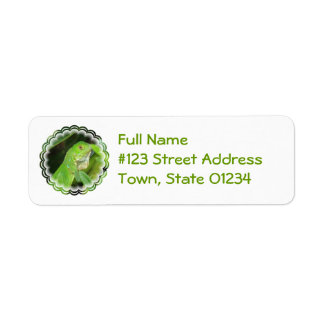 Etiqueta del remite del lagarto verde etiqueta de remite