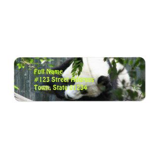 Etiqueta del remite del oso de panda etiqueta de remite