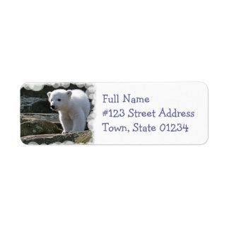 Etiqueta del remite del oso polar del bebé etiqueta de remite