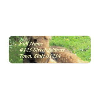 Etiqueta del remite del perro de Airedale Terrier Etiqueta De Remite