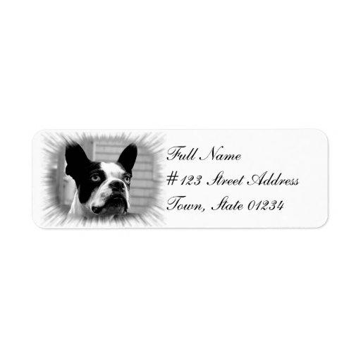 Etiqueta del remite del perro de Boston Terrier Etiquetas De Remite